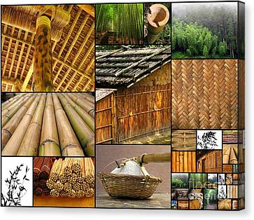 The Many Faces Of Bamboo Canvas Print by Yali Shi