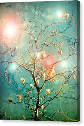 The Memory Of Dreams Canvas Print by Tara Turner