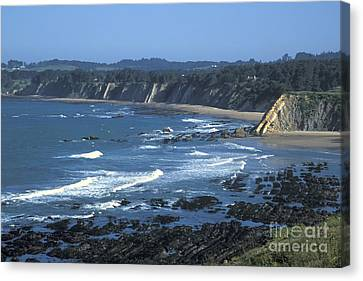The Mendocino Coast Canvas Print by Stan and Anne Foster