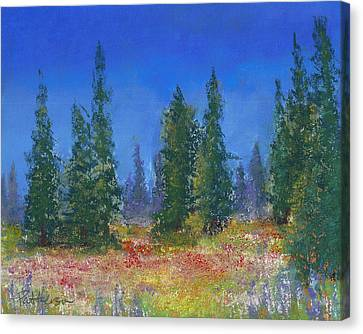 The Mountain Meadow Canvas Print by David Patterson