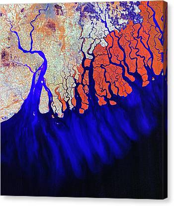 The Mouths Of The Ganges II Canvas Print by Leonardo Sandon