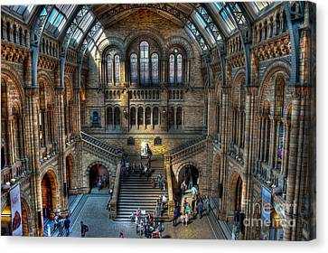 The Natural History Museum London Uk Canvas Print by Donald Davis