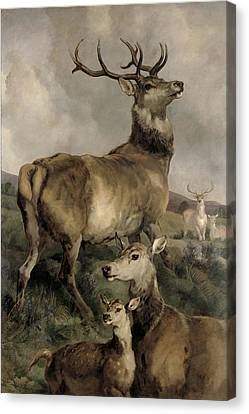 The Noble Beast Canvas Print by Sir Edwin Landseer