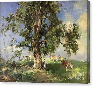 The Old Ash Tree Canvas Print by Edward Arthur Walton