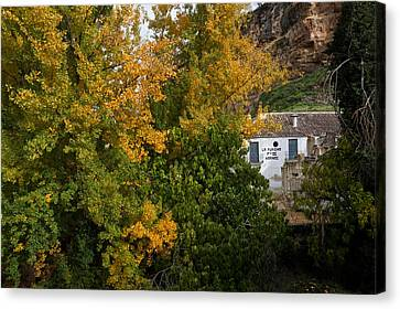 The Old Flour Mill And Elm Trees Canvas Print by Panoramic Images