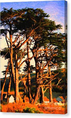 The Old Grove At The Ranch At Sunset . 40d4531 . Painterly Canvas Print by Wingsdomain Art and Photography