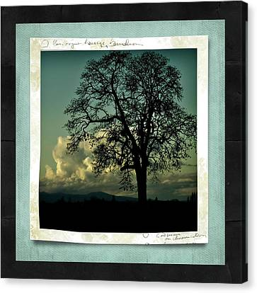 The Old Oak Canvas Print by Bonnie Bruno