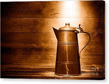 The Old Pitcher - Sepia Canvas Print by Olivier Le Queinec