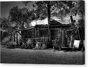The Old Shed II Canvas Print by David Patterson