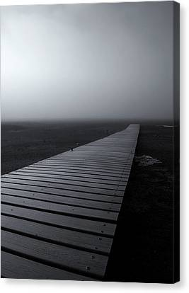 The Path Canvas Print by Mike  Dawson