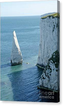 The Pinnacle Stack Of White Chalk On The Isle Of Purbeck Dorset England Uk Canvas Print by Andy Smy