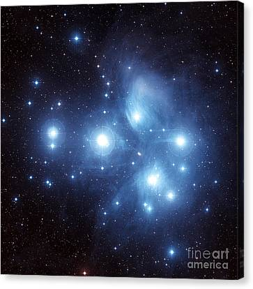 The Pleiades Star Cluster Canvas Print by Charles Shahar