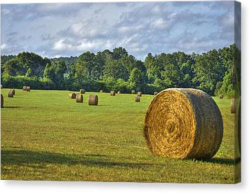 The Productive Southern Hay Field Canvas Print by Reid Callaway