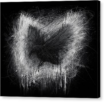 The Raven - Black Edition Canvas Print by Christian Klute