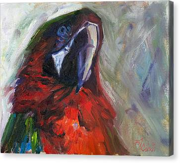 The Real Mccaw Canvas Print by Billie Colson