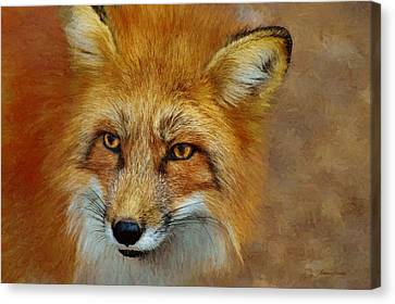 The Red Fox 658-painted Canvas Print by Ericamaxine Price