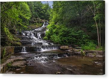 The Rensselaerville Falls Canvas Print by Mark Papke
