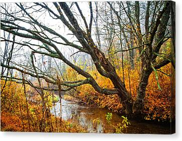 The River Runs Through Canvas Print by Debra and Dave Vanderlaan
