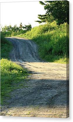 The Road Less Taken Canvas Print by Laurie Breton