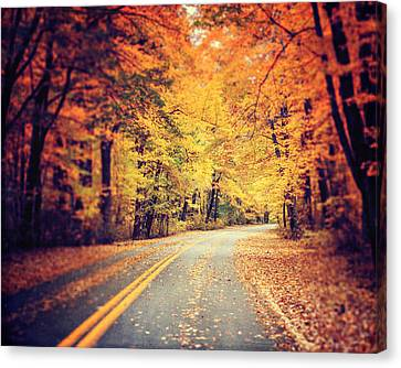 The Road Less Traveled Canvas Print by Lisa Russo
