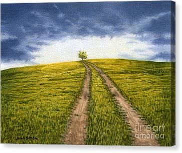 The Road Less Traveled Canvas Print by Sarah Batalka
