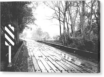 The Road Less Travelled - Country Bridge Canvas Print by Virginia Halford
