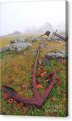 The Rusty Anchor  Canvas Print by Catherine Reusch Daley