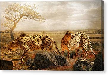 The Search For Tomorrow Canvas Print by Trudi Simmonds