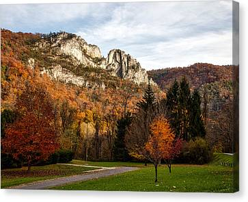 The Seneca Rocks In Autumn Canvas Print by Mountain Dreams
