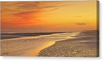 The Shallows Canvas Print by Phill Doherty