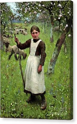 The Shepherdess Canvas Print by George Clausen