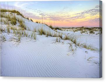 The Snow White Dunes Of The Panhandle Canvas Print by JC Findley