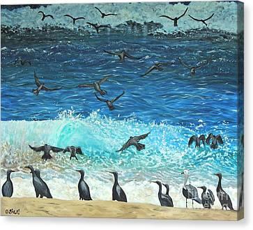 The Sociable Seagull Canvas Print by Caroline Street