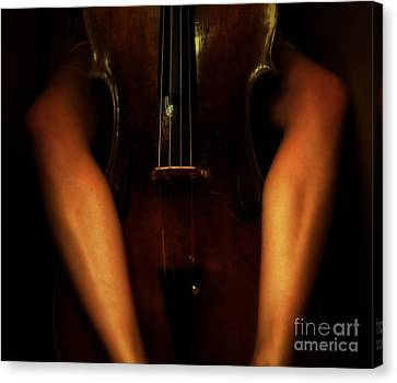 The Sound Of Eroticism   Canvas Print by Steven  Digman