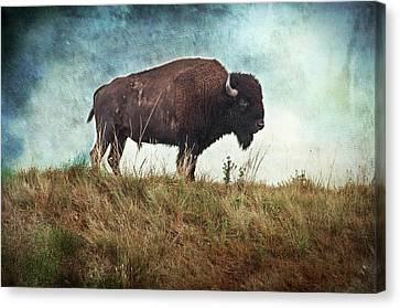 The Stance Canvas Print by Tamyra Ayles
