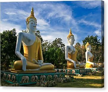 The Three Buddhas  Canvas Print by Adrian Evans