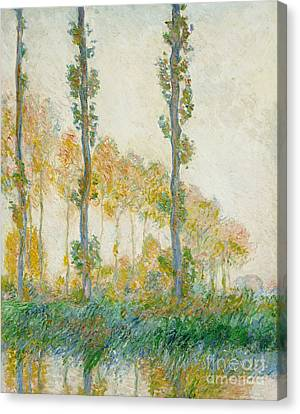 The Three Trees Canvas Print by Claude Monet