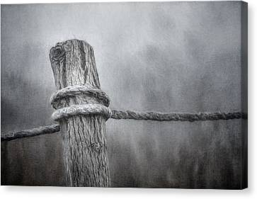 The Tie That Binds Canvas Print by Scott Norris