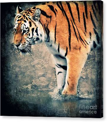 The Tiger Canvas Print by Angela Doelling AD DESIGN Photo and PhotoArt