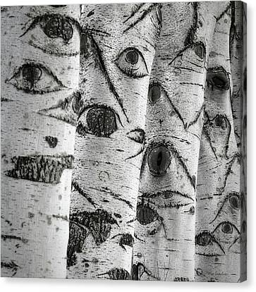 The Trees Have Eyes Canvas Print by Wim Lanclus