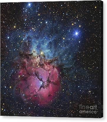 The Trifid Nebula Canvas Print by R Jay GaBany