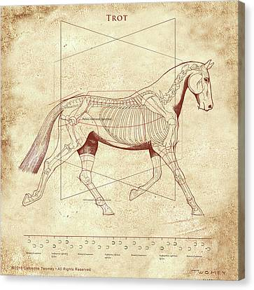 The Trot - The Horse's Trot Revealed Canvas Print by Catherine Twomey