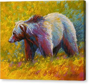 The Wandering One - Grizzly Bear Canvas Print by Marion Rose