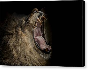 The War Cry Canvas Print by Paul Neville