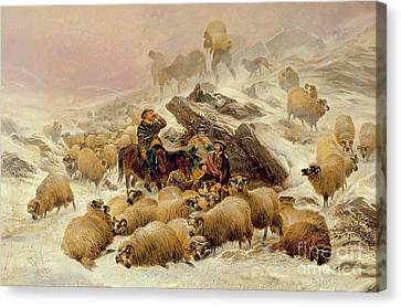 The Warmth Of A Wee Dram Canvas Print by TS Cooper