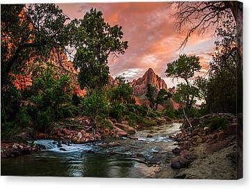 The Watchman Sunset Zion National Park Canvas Print by Scott McGuire