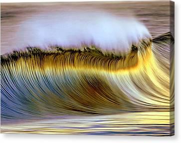 The Wave Canvas Print by Zarija Pavikevik