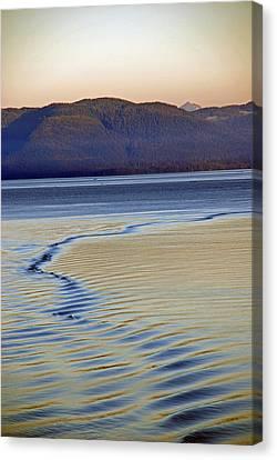 The Waves Canvas Print by Carol  Eliassen