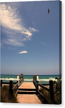 The Way Out To The Beach Canvas Print by Susanne Van Hulst