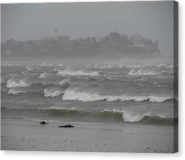 The Weather Started Getting Rough Canvas Print by Brian Mazzoli